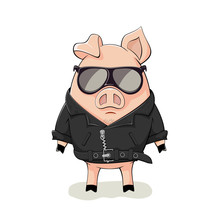 Pig In A Black Leather Jacket