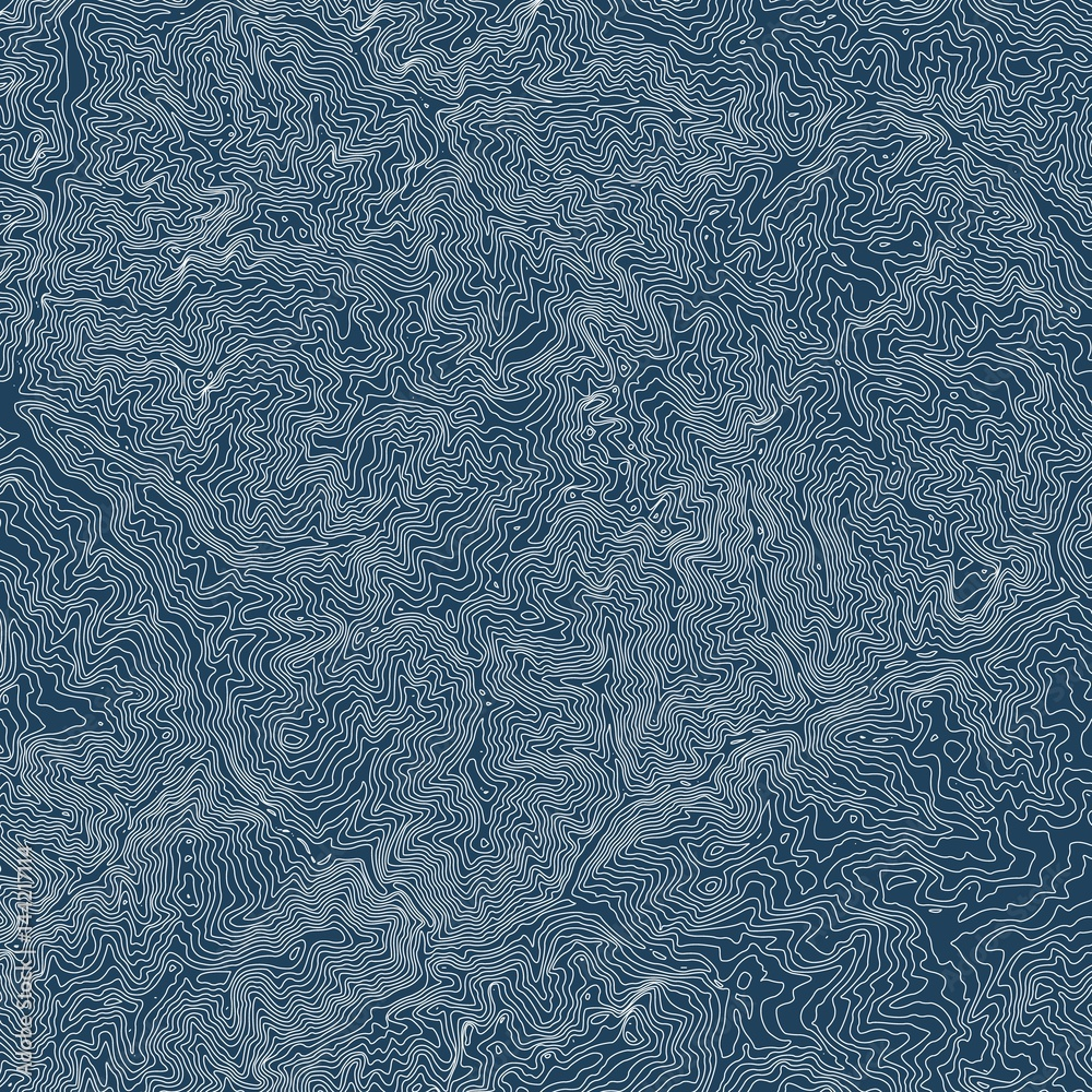 Fototapety, obrazy: Vector abstract earth relief map. Generated conceptual elevation map. Isolines of landscape surface elevation. Geographic map conceptual design. Elegant background for presentations.