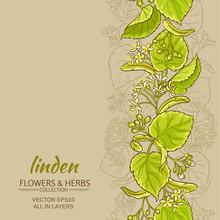 Linden Vector Background