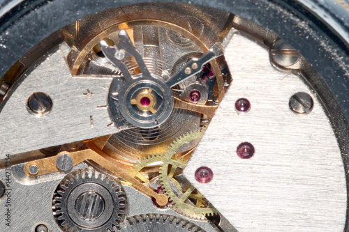 Gears and a pendulum with a spring to support a constant movement in
