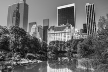 New York Skyscrapers Reflecting In The Central Park Pond, Black And White