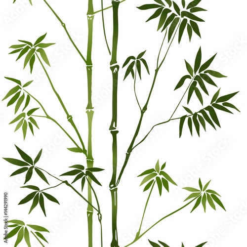 bambusowy-bezszwowy-wzor