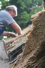 Thatcher Thatching A Roof