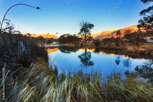 Fényképezés  SM Pond frost Grass