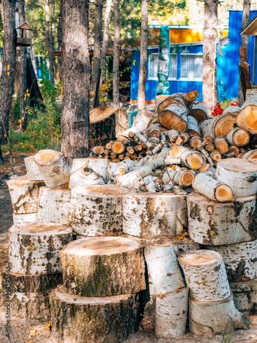 Foto op Plexiglas Artistiek mon. Logs of a tree. The sawn wood. The texture of the sawn wood.
