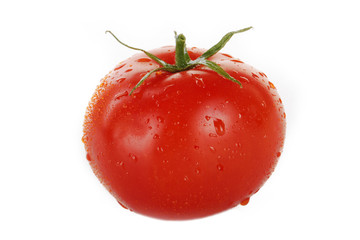 red tomato with water drops  isolated on white background