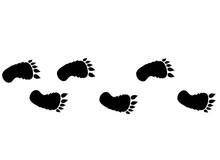 Footprints Of Bigfoot. Foot Pr...
