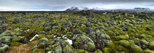 A Field Of Moss Covered Rocks In The Western Iceland