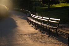 Park Bench On The Curve At Central Park