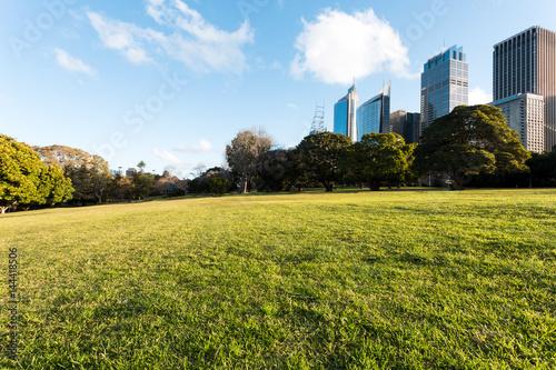 Foto op Plexiglas Weide, Moeras green meadow with cityscape of shanghai