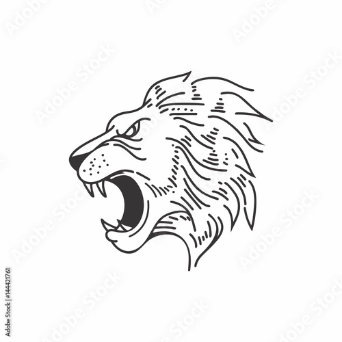 Fototapety, obrazy: lion head icon logo line drawing