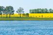 Blühende Landschaften: in der Sonne leuchtende Rapsfelder unter wolkenlosem Himmel vom Wasser aus gesehen, Brassica napus, Ackerbau