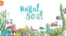 Watercolor Sea Life, Seaweed, Shell, Fish, Sea Horse, Beautiful Background