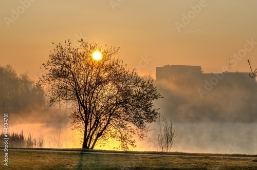 spring-morning-landscape-at-sunrise-the-rising-sun-in-the-city-park-on-the-pond