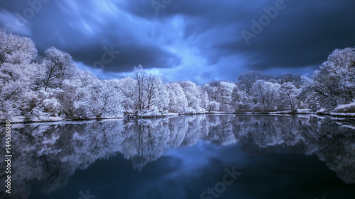 Foto  Trees on the pond. Infrared landscape