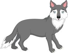 Cartoon Wolf Isolated On White...