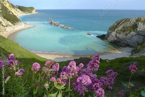 Fotografiet Man of War Bay near Durdle Door, Dorset, England UK The Jurassic coast a UNESCO
