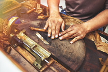 Closeup Of Hands Making Cigar ...