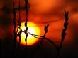 夕方の夜景