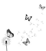 Vector Dandelion With Butterflies