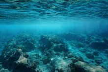 Underwater Sea Surface Clear W...