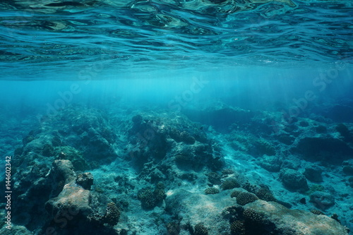 Fotobehang Koraalriffen Underwater sea surface clear water with natural sunlight and rocky seabed, Pacific ocean, Atoll of Rangiroa, Tuamotu, French Polynesia