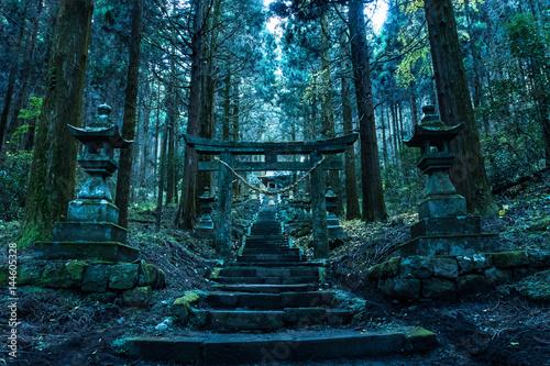 Obraz na plátně 上色見熊野座神社
