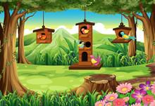 Park Scene With Birds In Birdh...