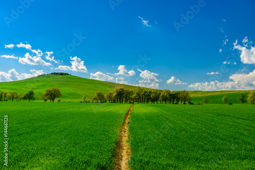 Deurstickers Groene View of Tuscany countryside in spring
