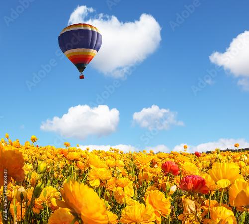 ogromny-balon-lecacy-nad-polem-zoltych-kwiatow