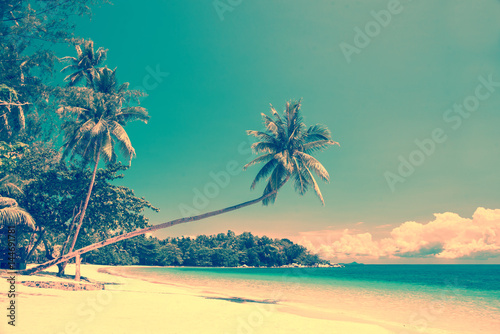 Poster Palmier Tropical beach landscape with a leaning palm tree, vintage process
