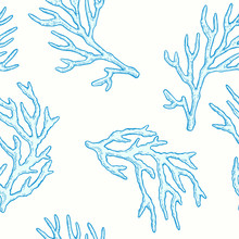 Marine Life. Vector Seamless Pattern With Hand Drawn Sea Natural Elements. Coral Sprigs