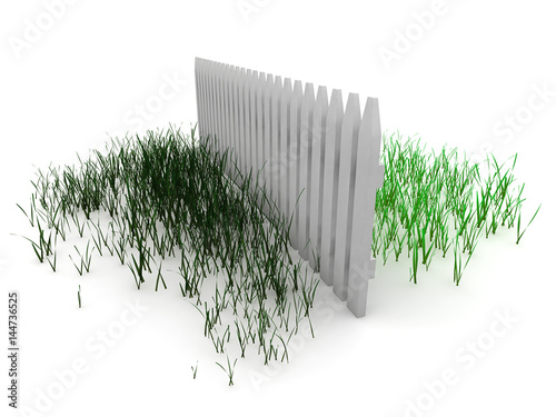 Photo 3d: Grass is Always Greener on the Other Side of the Fence