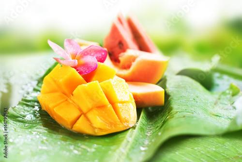 Mango Water Melon Papaya Melon Fruits Tropical