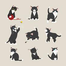 Black Baby Cat Kitten Illustration Set