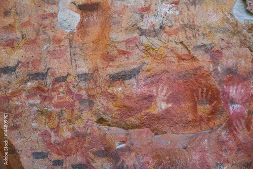 Cueva de las Manos Canvas Print