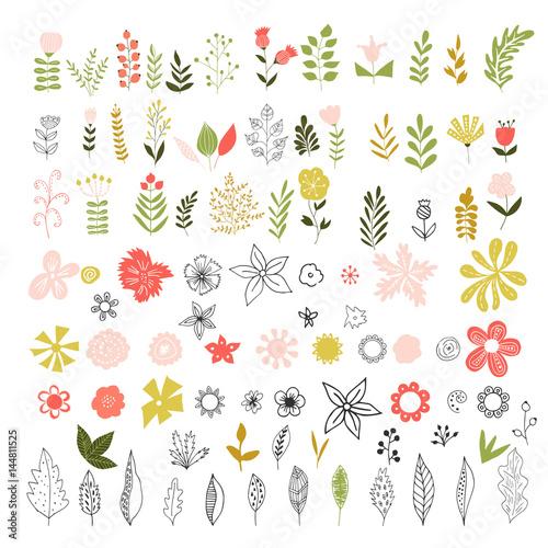 Set of vintage flowers, herbs and leaves. Wall mural