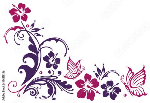 Florale Ranke mit Hibiskus und Schmetterlingen. Schönes Motiv im ...