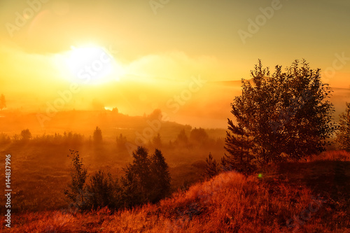 Fantastic foggy river with fresh green grass in the sunlight. Sun beams through tree. Dramatic colorful scenery. #144837996