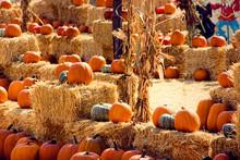 Pumpkin Patch Display On Hay B...