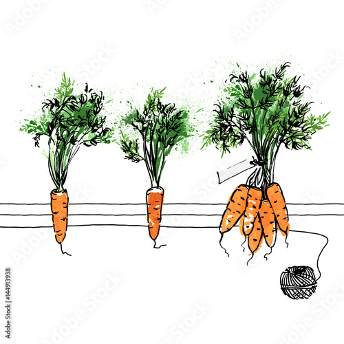 Foto op Canvas Vogels in kooien Watercolor carrots on white background. Hand-painted vector pattern