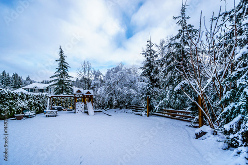 Fotobehang Snow covered Play Ground in the Fraser Valley of British Columbia, Canada on a cold winter day and with snow covered trees and lawn