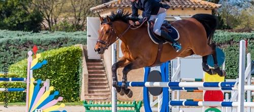 Deurstickers Paardensport Equitation, saut d'obstacle, compétition.