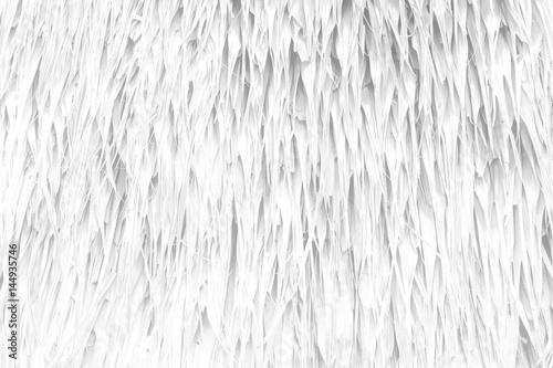 Tuinposter Hout White Straw Wall Texture Background.