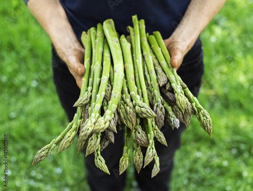 Valokuva  Asparagus