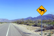 Donkey Or Burro Crossing Warni...