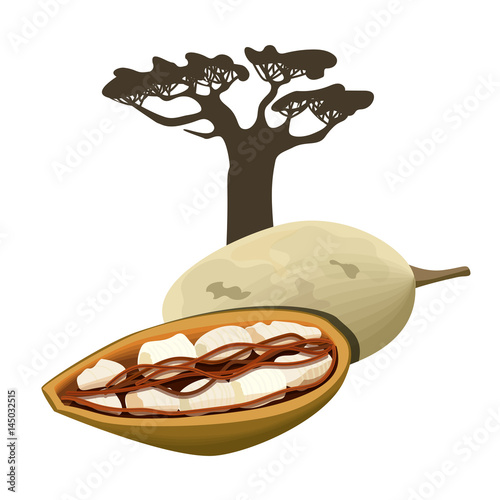 Baobab tree and fruit pod Isolated object Wallpaper Mural