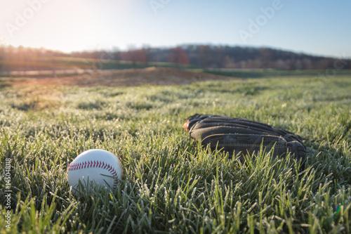 Plakat Baseball rękawiczka i piłka na polu w wczesnym poranku trawie i rosie gdy słońce wzrasta w tle