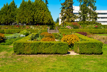 The Sunken Garden On The Groun...