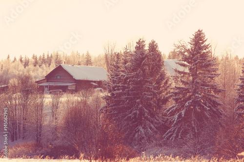 Spoed Foto op Canvas Iris frosty winter morning landscape nature sunny